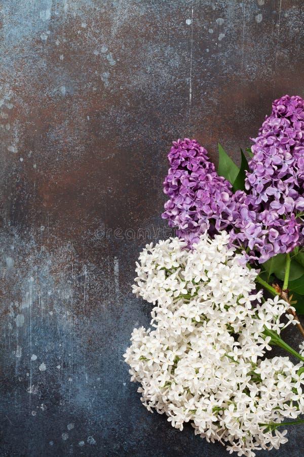 Kolorowi bzów kwiaty fotografia royalty free