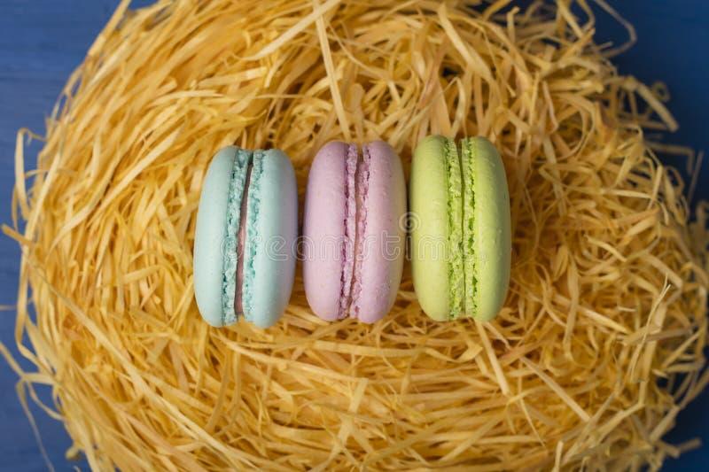 Kolorowi ciastka, makaron w ptasim ` s gniazdeczku na błękitnym tle okrąg barwiący Easter jajek eps10 astronautyczny teksta temat obrazy stock