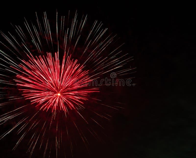 Kolorowi Czerwoni fajerwerki z Czarnym nieba tłem obraz stock