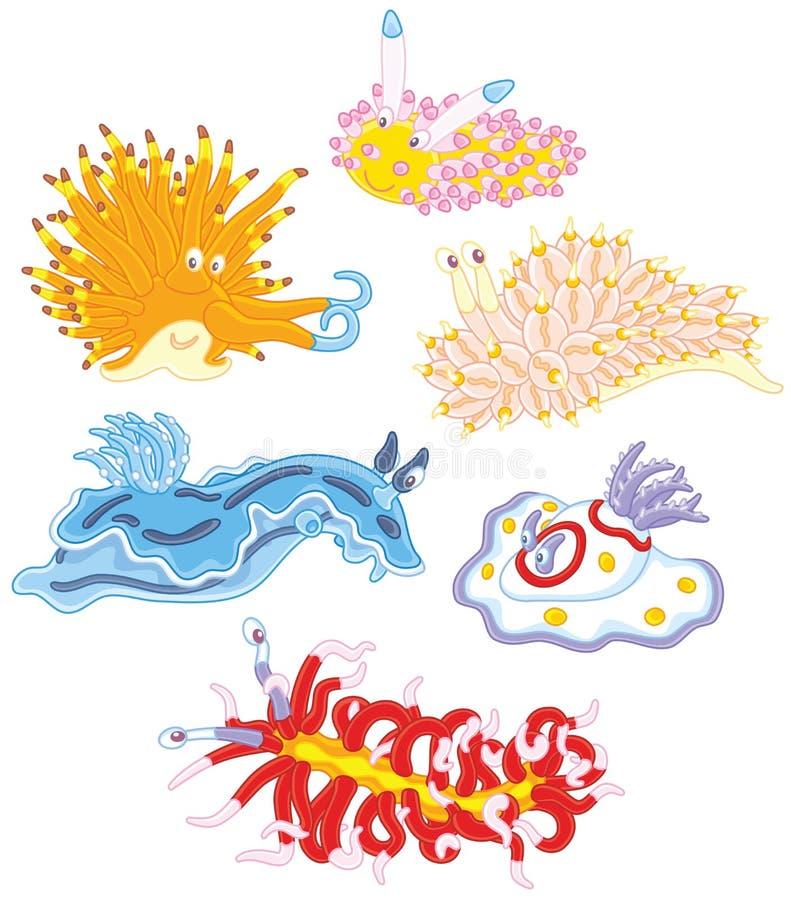 Kolorowi denni małże ilustracja wektor