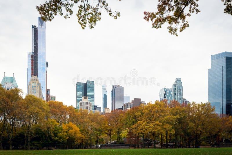 Kolorowi drzewnej linii i środka miasta Manhattan budynki fotografia stock
