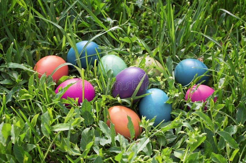 Kolorowi Easter jajka w zielonej trawie. obrazy royalty free