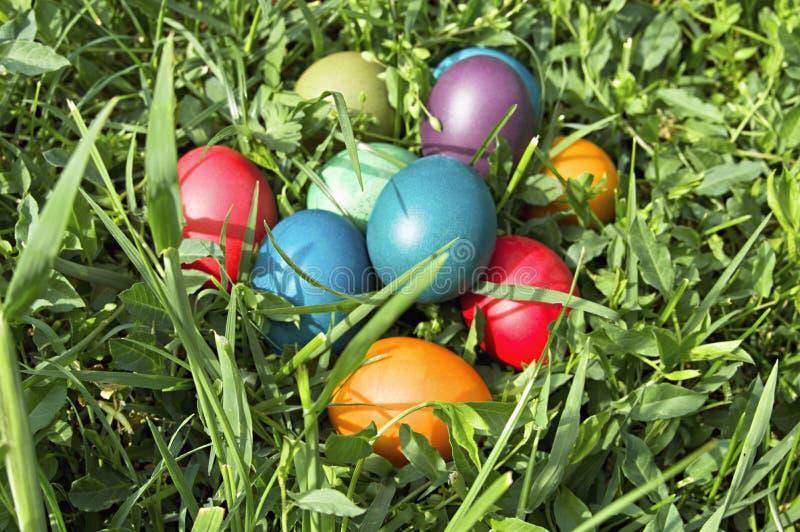 Kolorowi Easter jajka w zielonej trawie. zdjęcie royalty free