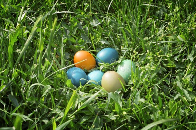 Kolorowi Easter jajka w zielonej trawie. obraz royalty free