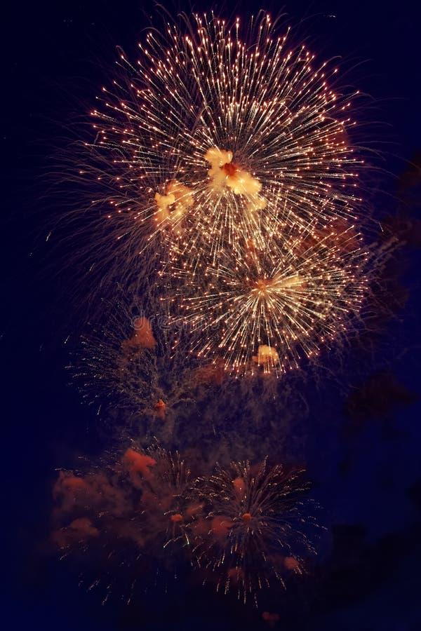 Kolorowi fajerwerki na ciemnym nocnego nieba tle Wakacje światło obraz royalty free