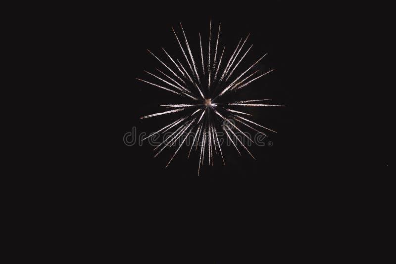 Kolorowi fajerwerki na czarnym nieba tle zdjęcie royalty free