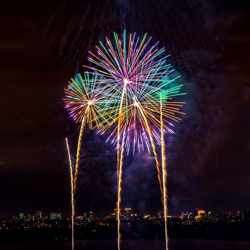 Kolorowi fajerwerki na tle ciemny niebo i nig fotografia royalty free