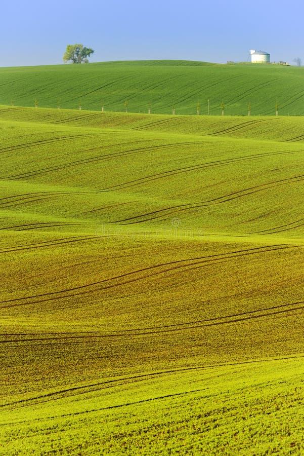 Kolorowi faliści wzgórza w Południowym Moravia fotografia stock