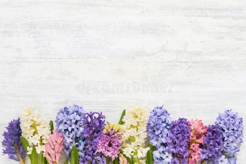 Kolorowi hiacyntowi kwiaty graniczą na białym drewnianym tle Odgórny widok, kopii przestrzeń zdjęcie stock
