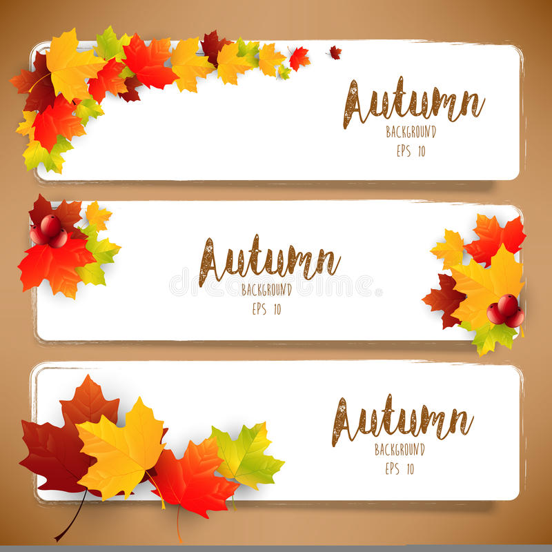 Kolorowi jesień liście sztandary royalty ilustracja