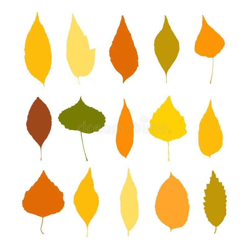 Kolorowi jesień liście ustawiają odosobnionego na białym tło wektorze ilustracja wektor