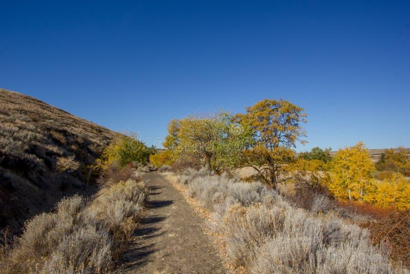 Kolorowi jesieni drzewa wykładają brud wycieczkuje ścieżkę Śnieżny Halny rancho zdjęcia stock