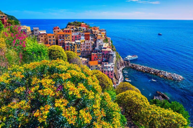Kolorowi kwiaty i turystyczna wioska rybacka, Manarola, Cinque Terre, Włochy obraz stock