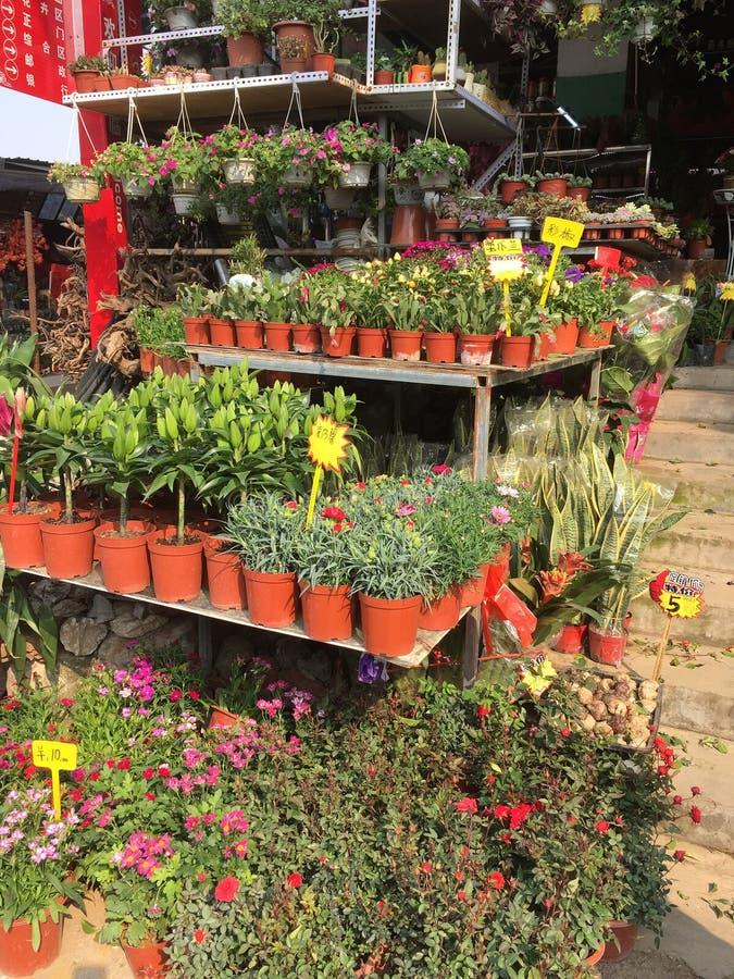 Kolorowi kwiaty sprzedaje przy sklepu Nanning miastem zdjęcia stock