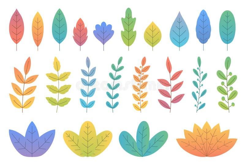 Kolorowi liście i gałąź ilustracji