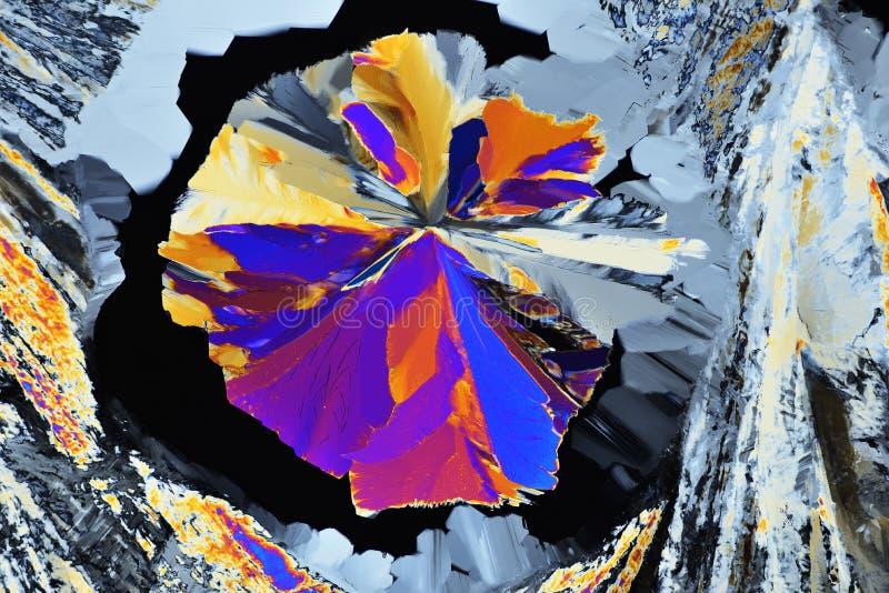 Kolorowi mikro kryszta?y w polaryzuj?cym ?wietle Fotografia przez mikroskopu obraz royalty free
