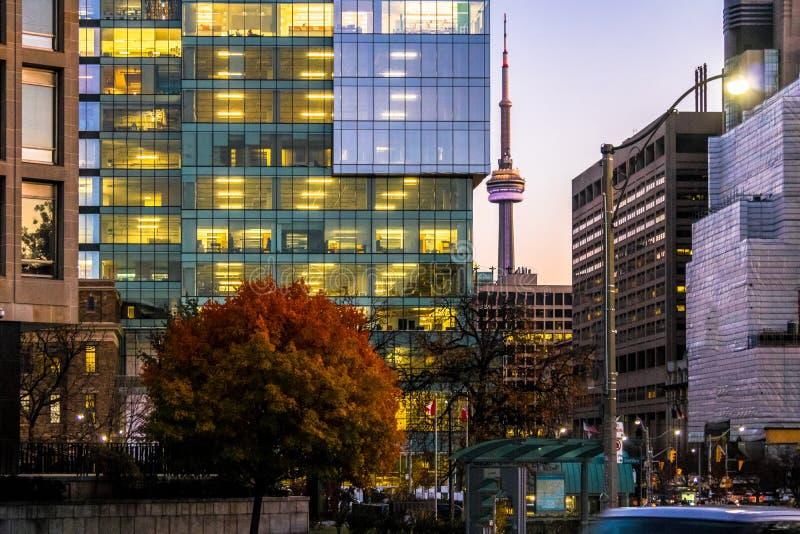 Kolorowi nowożytni budynki w centrum Toronto i CN Górują przy nocą - Toronto, Ontario, Kanada zdjęcie stock