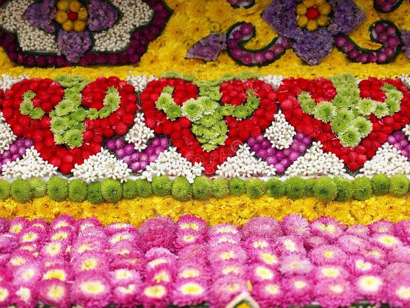 Kolorowi okwitnięcie kwiaty