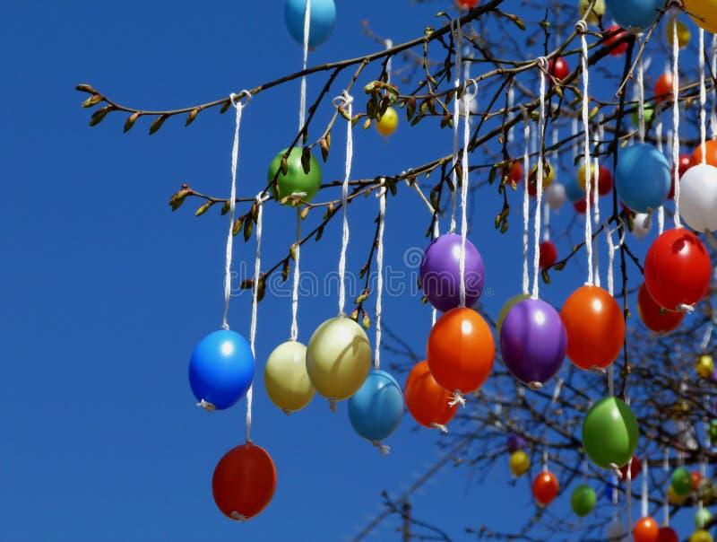 Kolorowi plastikowi jajka dekoruje drzewa w wiośnie dla wielkanocy zdjęcia stock