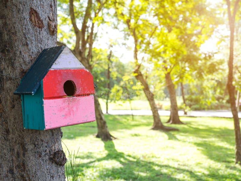 Kolorowi ptaków domy w parkowym obwieszeniu na drzewie ptaka dom umieszczali przy różnorodnymi punktami birdhouse las z dużo zdjęcia stock