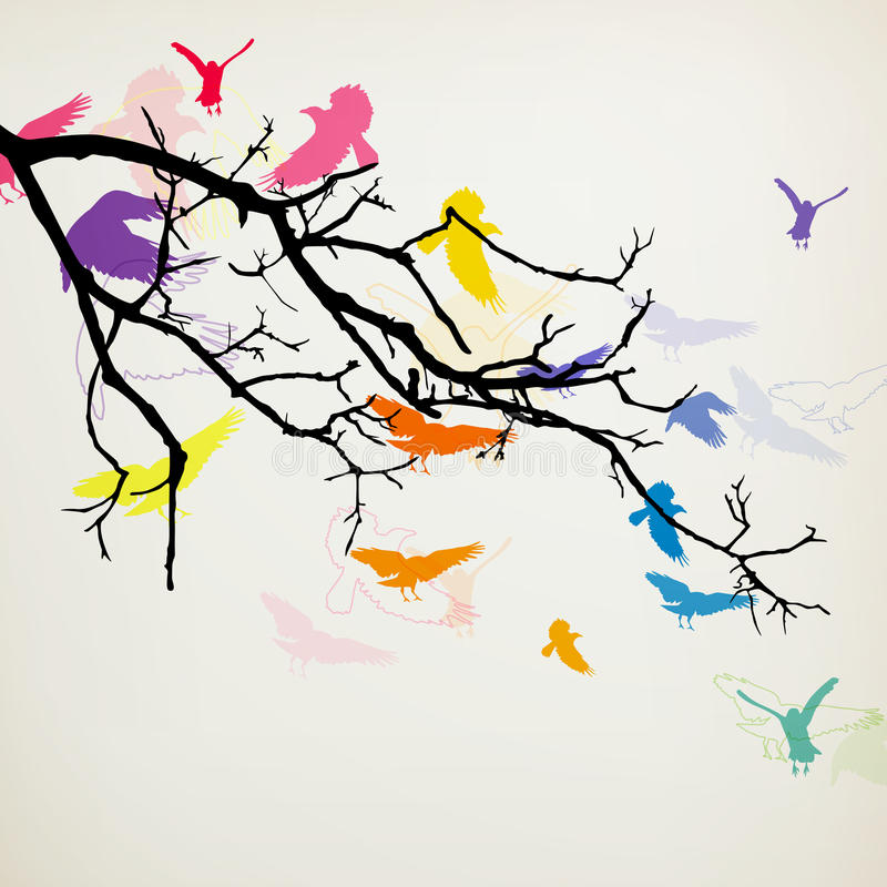 Kolorowi ptaki ilustracji