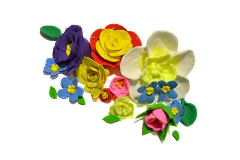kolorowi t?o kwiaty odizolowywali biel zdjęcie royalty free