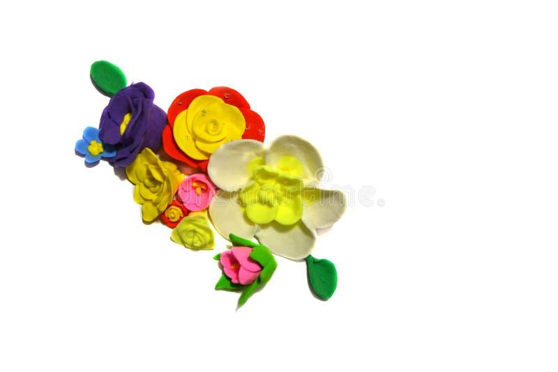 kolorowi t?o kwiaty odizolowywali biel obrazy royalty free