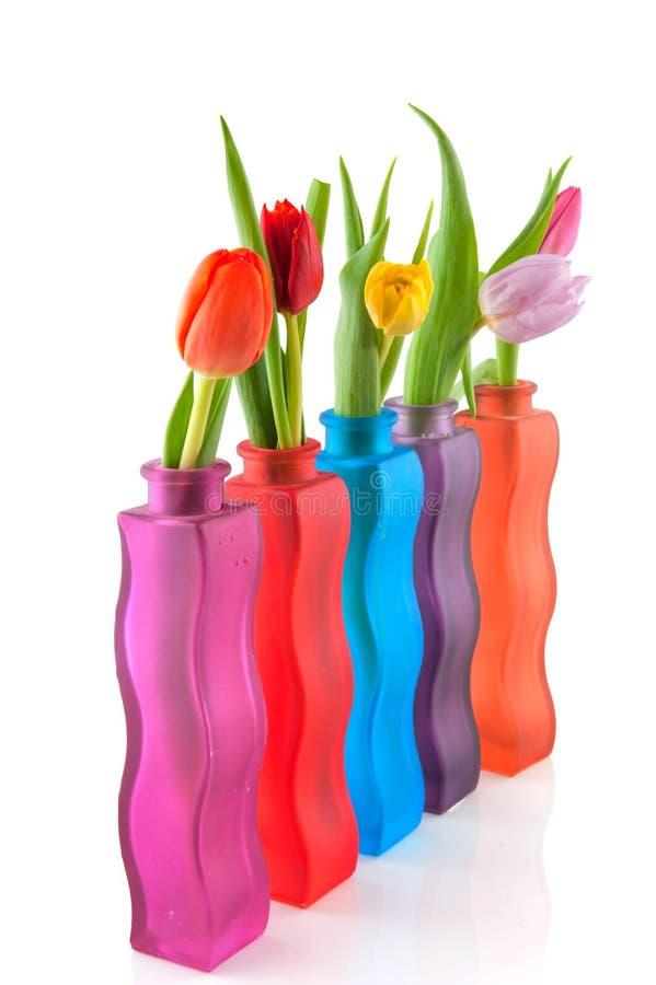 Download Kolorowi tulipany obraz stock. Obraz złożonej z pięć - 13327141