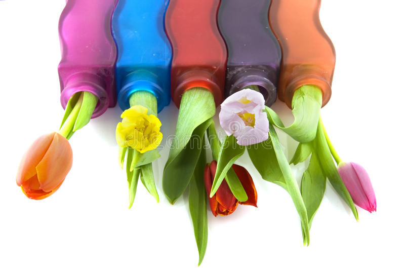 Download Kolorowi tulipany zdjęcie stock. Obraz złożonej z natura - 13328008