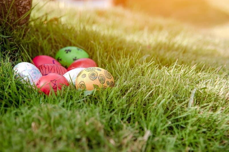 Kolorowi Wielkanocni jajka w trawie przeciw zamazanemu zielonemu tłu Wiosna wakacji poj?cie obraz royalty free