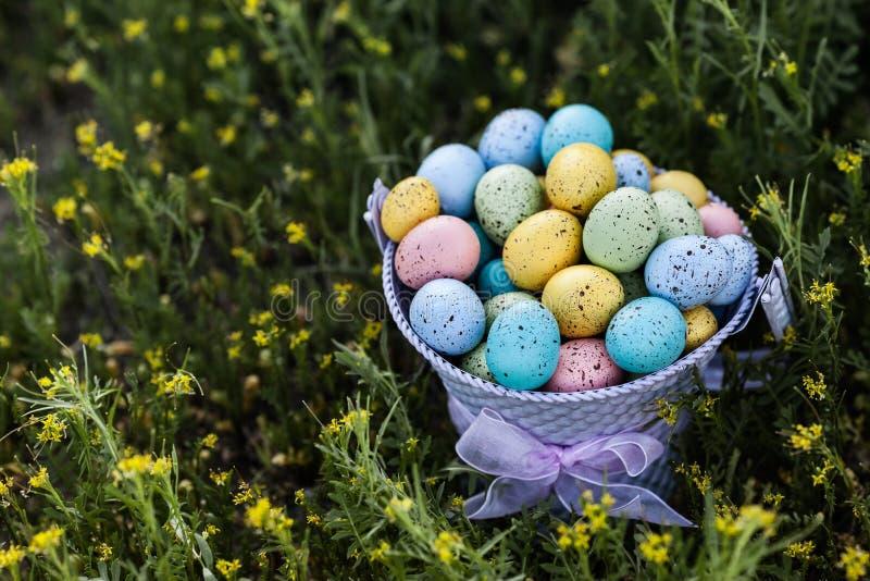 Kolorowi Wielkanocni jajka zbierający w purpurowym wiadrze na trawy tle obrazy stock
