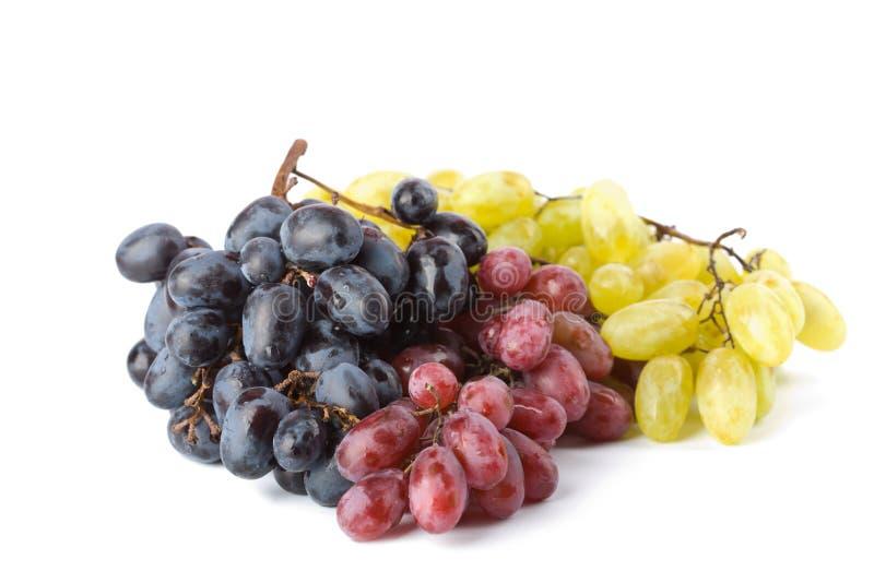 kolorowi winogrona odizolowywali dojrzałego zdjęcia stock