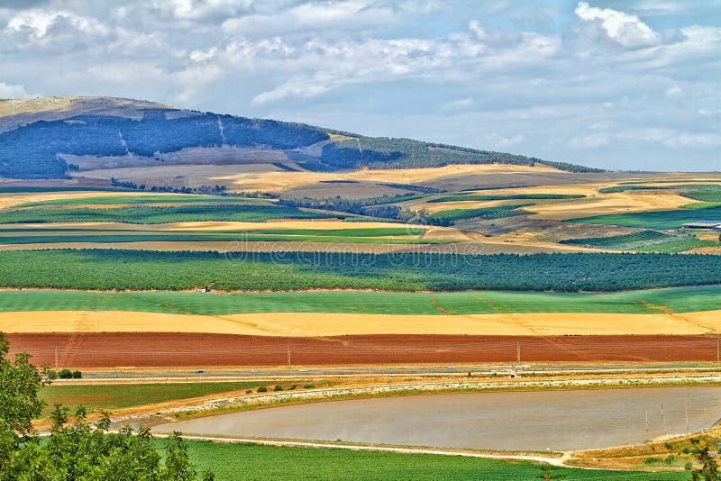 Kolorowi wzgórze golan obrazy royalty free