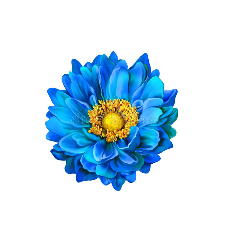 Kolorowy Błękitny Mona Lisa kwiat, wiosna kwiat royalty ilustracja