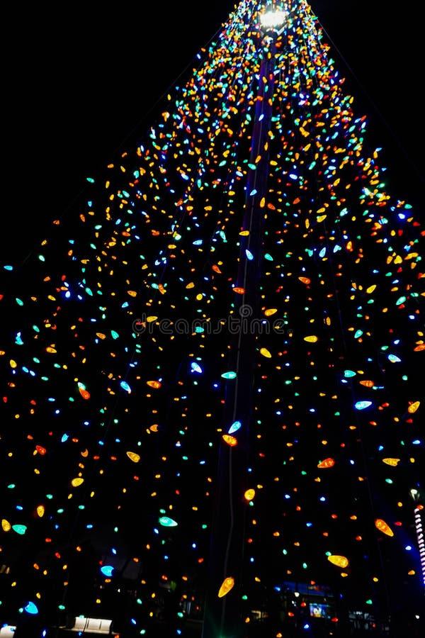 Kolorowy boże narodzenie sznurka światła drzewo obraz stock