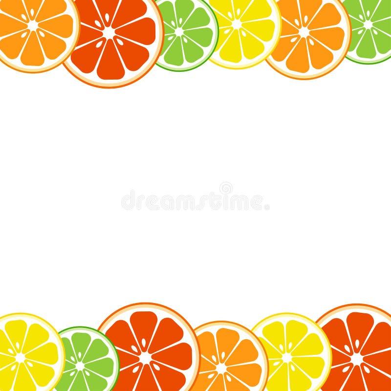 Kolorowy cytrus owoc t?o Cytryna, wapno, pomara?cze, grapefruitowa wektor royalty ilustracja