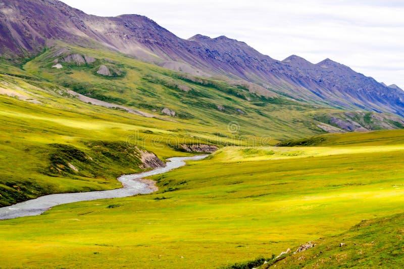 Kolorowy dolinny widok obrazy royalty free