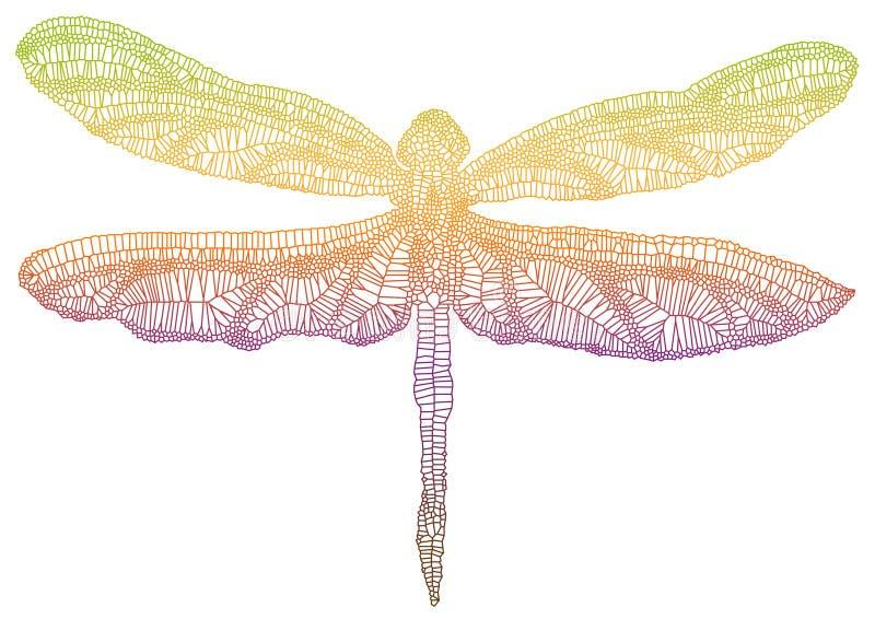 kolorowy dragonfly ilustracji