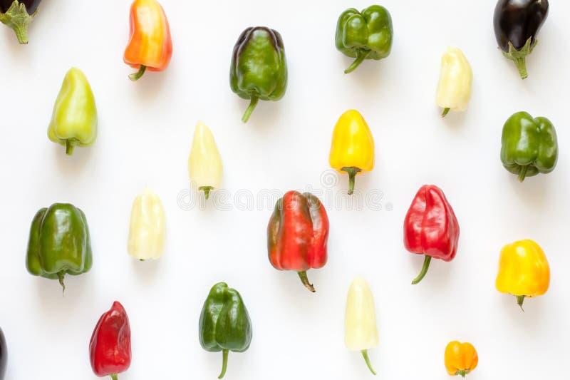 Kolorowy dzwonkowych pieprzy przygotowania kreatywnie wzór na bielu zdjęcia royalty free