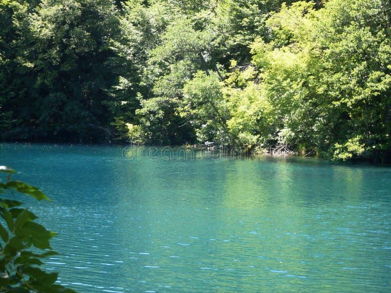 Kolorowy i wibrujący krajobraz jeziorny brzeg Spokojny krajobrazowy pożytecznie jako tło Niski jezioro jar Plitvice jeziora krajo obrazy royalty free