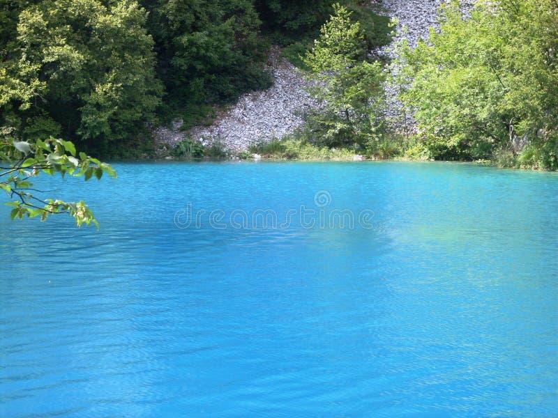 Kolorowy i wibrujący krajobraz jeziorny brzeg Spokojny krajobrazowy pożytecznie jako tło Niski jezioro jar Plitvice jeziora krajo zdjęcia stock