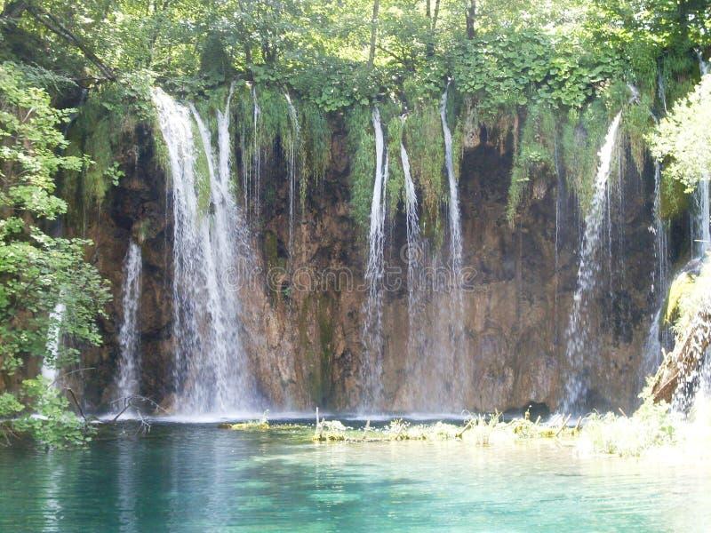 Kolorowy i wibrujący krajobraz jeziorny brzeg Spokojny krajobrazowy pożytecznie jako tło Niski jezioro jar Plitvice jeziora krajo zdjęcia royalty free