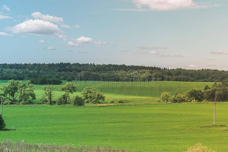 Kolorowy Jaskrawy Pogodny lato zieleni pole, Rzeczny lato krajobraz Z B??kitnym Chmurnym niebem, drzewa I wzg?rza, obraz stock