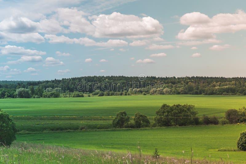 Kolorowy Jaskrawy Pogodny lato zieleni pole, Rzeczny lato krajobraz Z B??kitnym Chmurnym niebem, drzewa I wzg?rza, obrazy stock