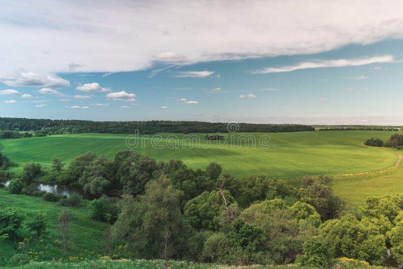 Kolorowy Jaskrawy Pogodny zieleni pola krajobraz Z B??kitnym Chmurnym niebem, drzewami I wzg?rzami, zdjęcie royalty free