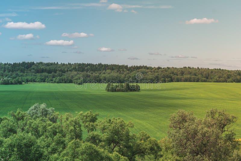Kolorowy Jaskrawy Pogodny zieleni pola lata krajobraz Z B??kitnym Chmurnym niebem, drzewami I wzg?rzami, obraz stock