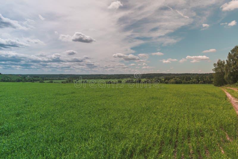 Kolorowy Jaskrawy Pogodny zieleni pole, wiejska droga, Rzeczny lato krajobraz Z B??kitnym Chmurnym niebem, drzewa I wzg?rza, obrazy stock