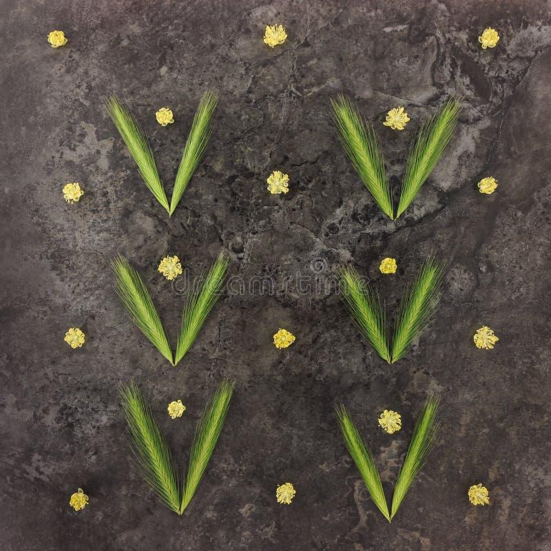 Kolorowy jaskrawy wzór robić kwiaty i spikelets zdjęcia stock