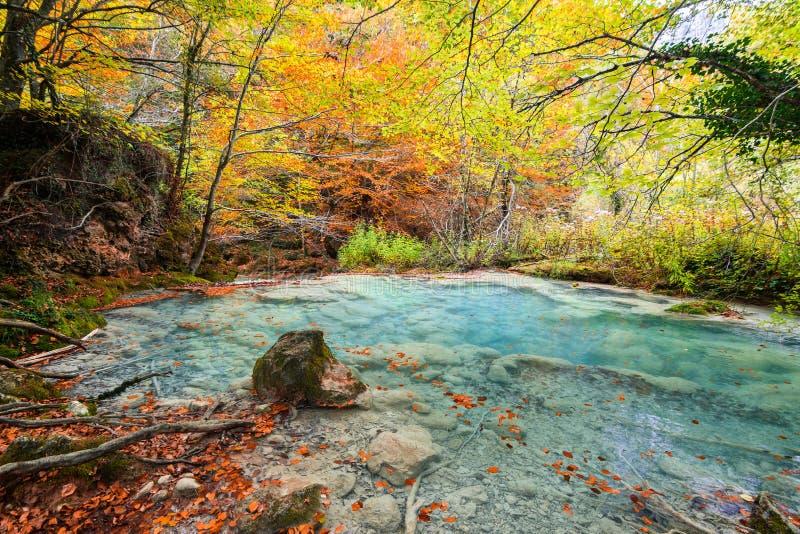 Kolorowy jesień krajobraz przy urederra źródłem, Hiszpania fotografia royalty free