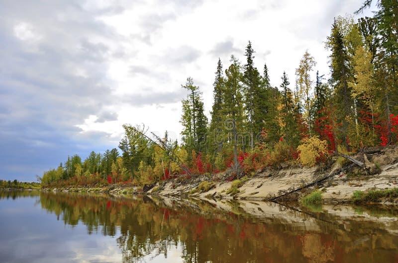 Kolorowy jesień las odbija w rzece przeciw niebieskiemu niebu zdjęcia stock